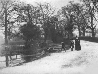 Lane near Bowes Park