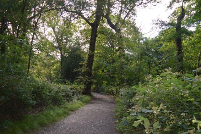 Kenwood, Hampstead Heath
