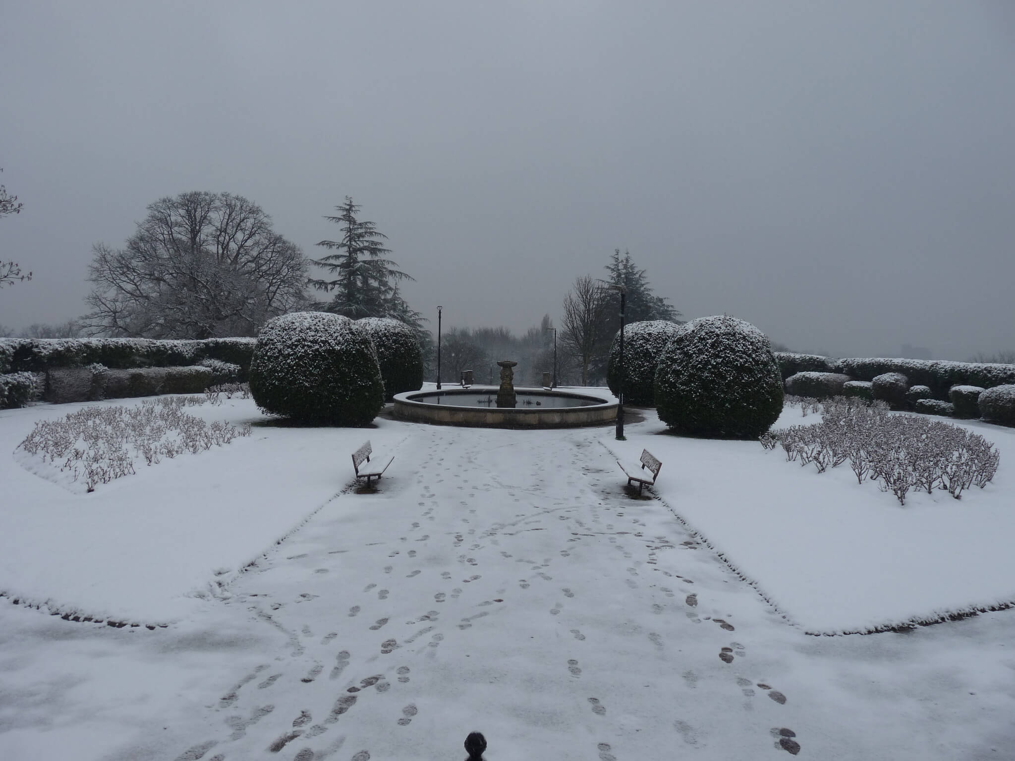 Alexandra Palace Rose Garden